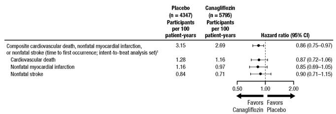 Invokana 100 Mg And 300 Mg Film Coated Tablets Summary Of Product
